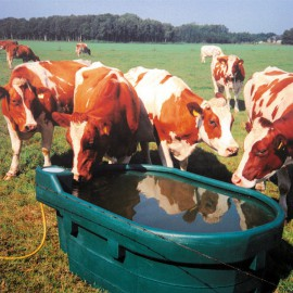 Weidedrinkbak, pe, type DT 1000, 1000 liter rundvee, koeien en paarden